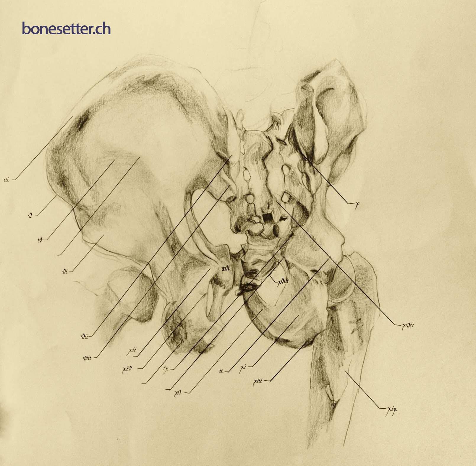 bonesetter_Back1